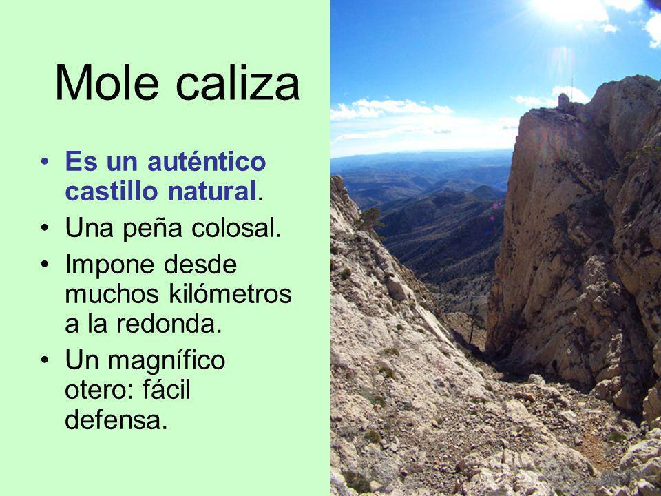 Mole caliza Es un auténtico castillo natural. Una peña colosal.