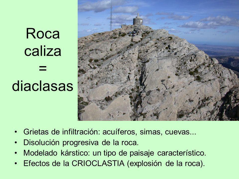 Roca caliza = diaclasas