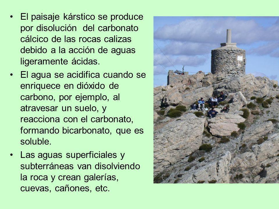 El paisaje kárstico se produce por disolución del carbonato cálcico de las rocas calizas debido a la acción de aguas ligeramente ácidas.
