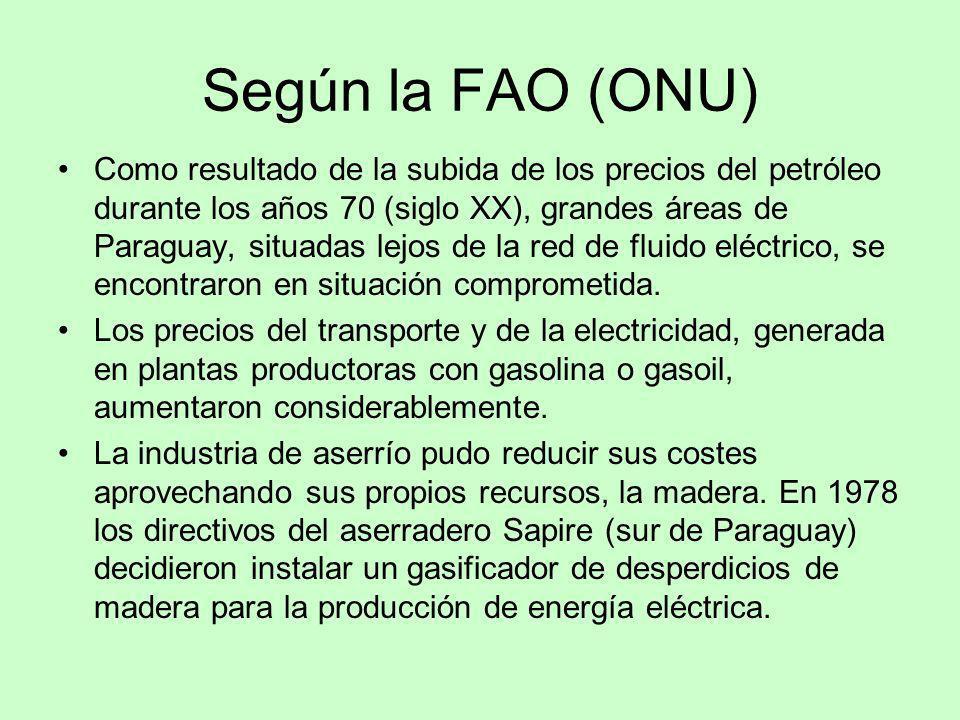 Según la FAO (ONU)
