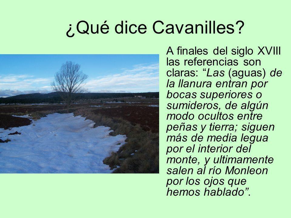 ¿Qué dice Cavanilles