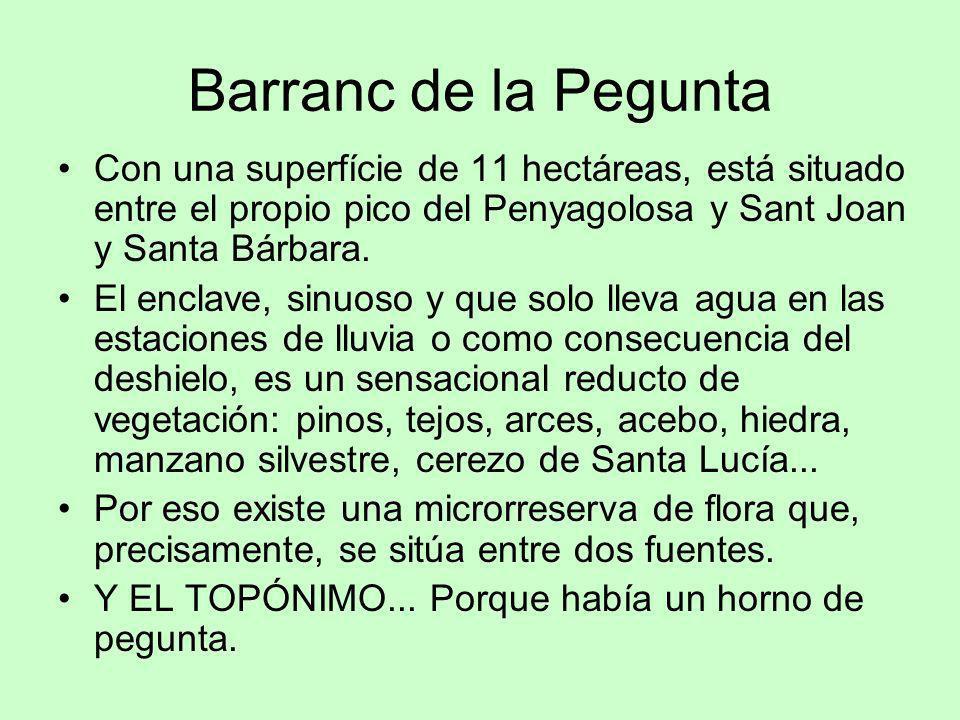 Barranc de la Pegunta Con una superfície de 11 hectáreas, está situado entre el propio pico del Penyagolosa y Sant Joan y Santa Bárbara.