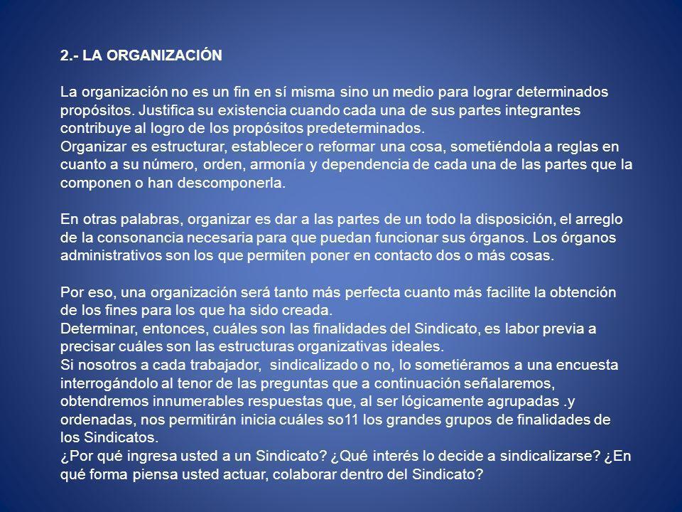2.- LA ORGANIZACIÓN