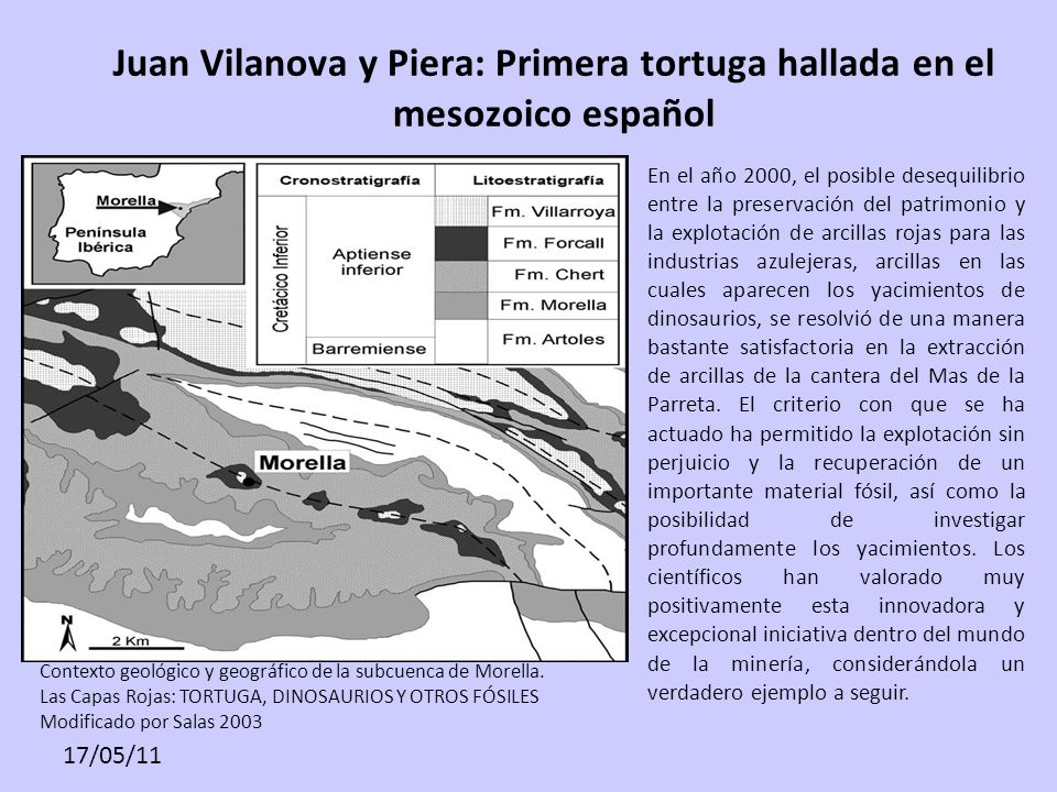 Juan Vilanova y Piera: Primera tortuga hallada en el mesozoico español