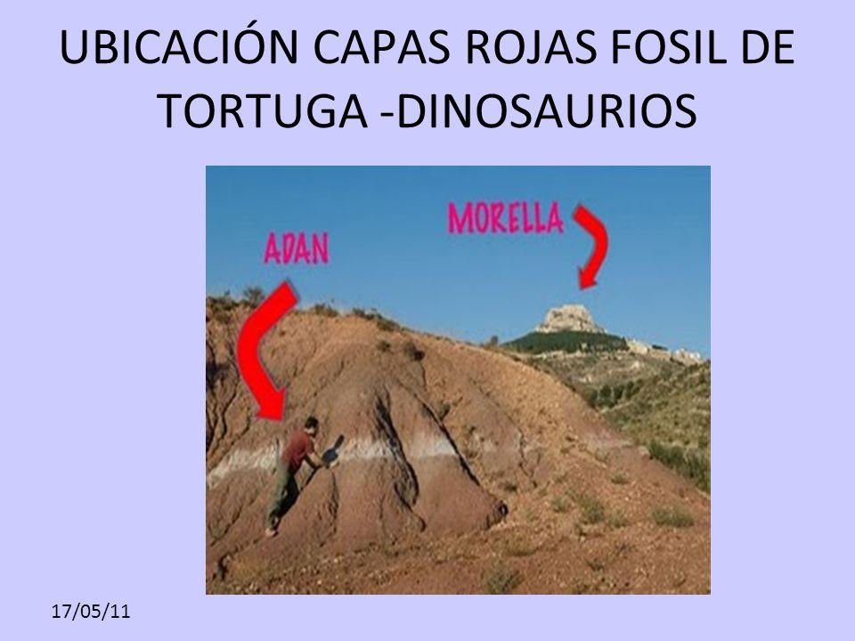 UBICACIÓN CAPAS ROJAS FOSIL DE TORTUGA -DINOSAURIOS