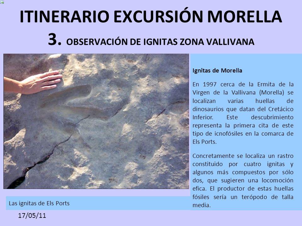 ITINERARIO EXCURSIÓN MORELLA 3. OBSERVACIÓN DE IGNITAS ZONA VALLIVANA