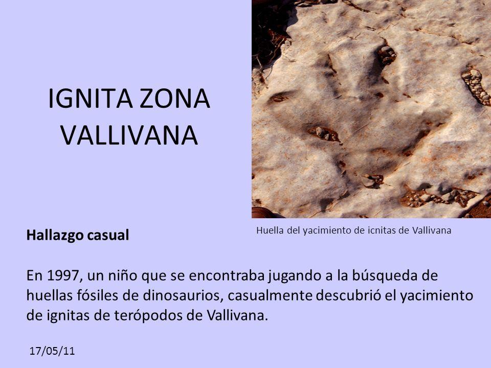 28282828 Huella del yacimiento de icnitas de Vallivana. IGNITA ZONA VALLIVANA.