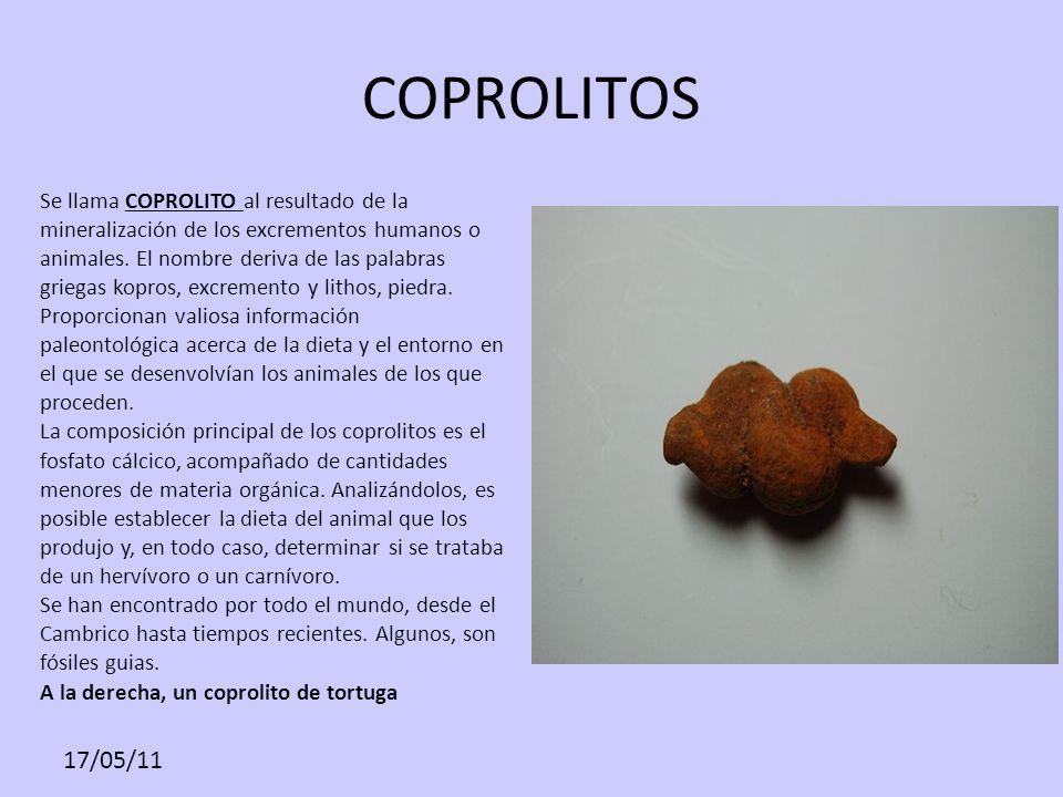 COPROLITOS