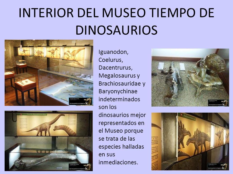INTERIOR DEL MUSEO TIEMPO DE DINOSAURIOS