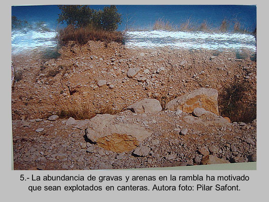 5.- La abundancia de gravas y arenas en la rambla ha motivado que sean explotados en canteras.