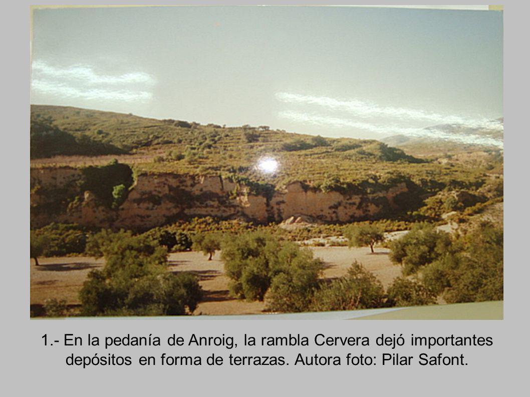 1.- En la pedanía de Anroig, la rambla Cervera dejó importantes depósitos en forma de terrazas.
