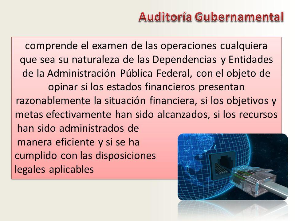 Auditoría Gubernamental