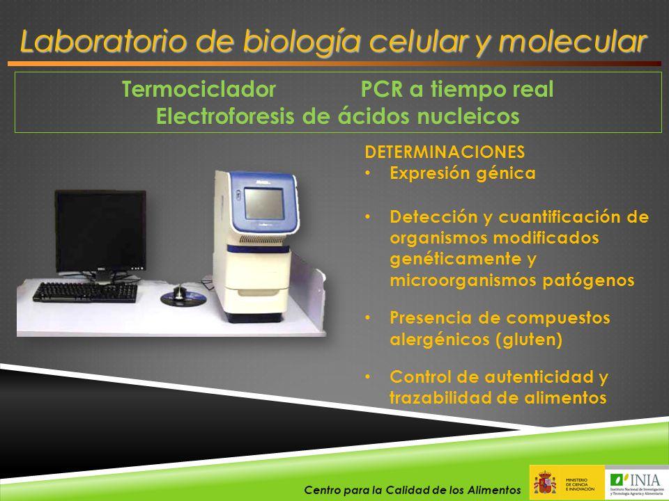 Termociclador PCR a tiempo real Electroforesis de ácidos nucleicos