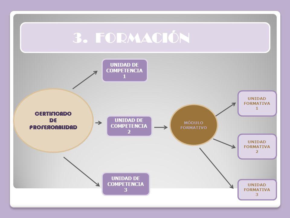 3. FORMACIÓN CERTIFICADO DE PROFESIONALIDAD UNIDAD DE COMPETENCIA 1
