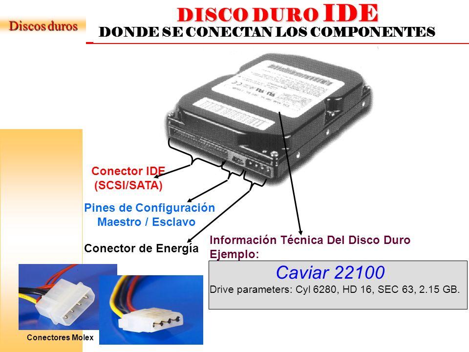 Conector IDE (SCSI/SATA)