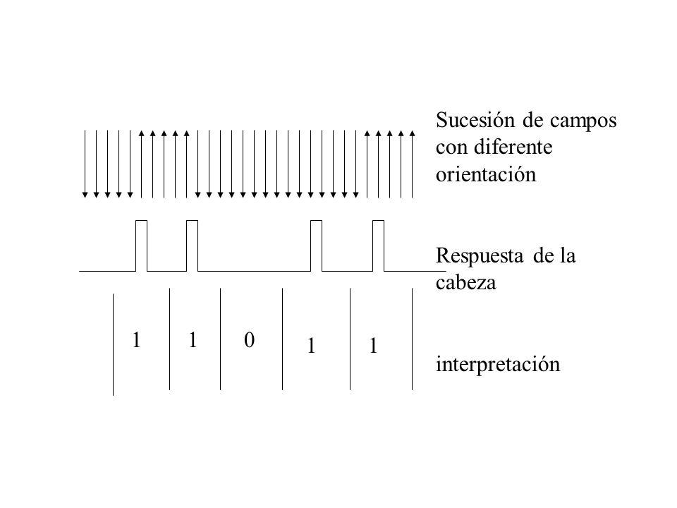 Sucesión de campos con diferente orientación