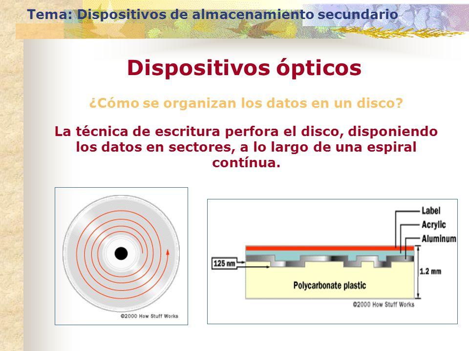¿Cómo se organizan los datos en un disco