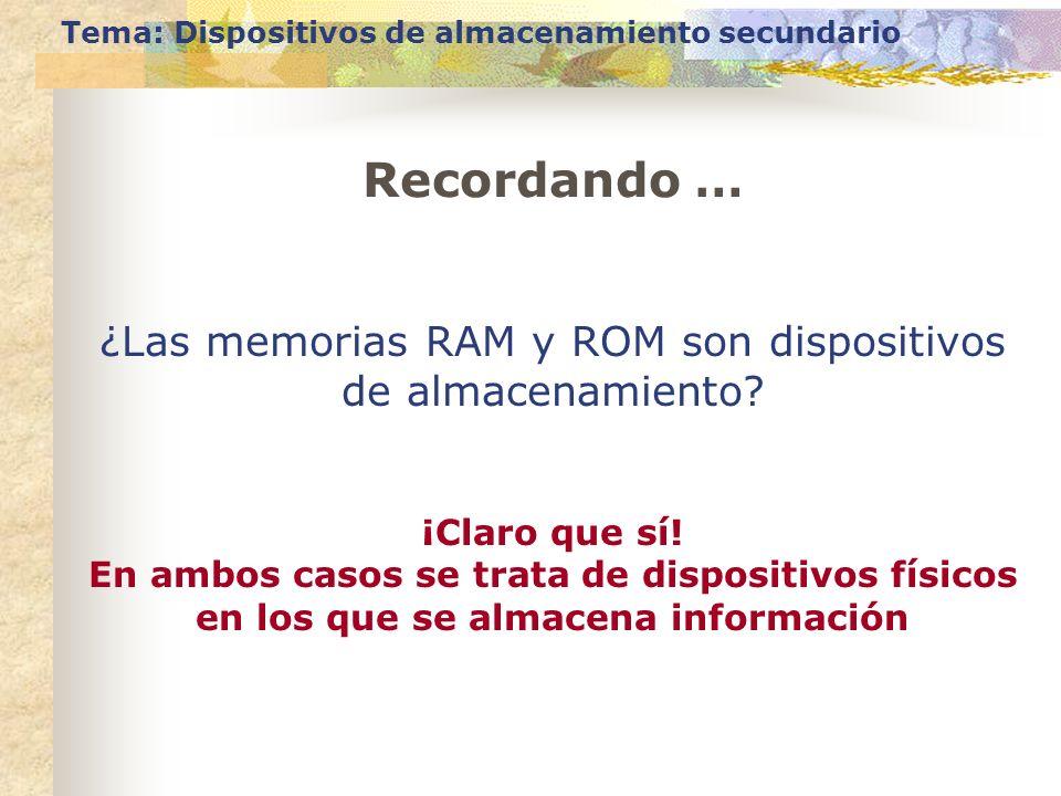 ¿Las memorias RAM y ROM son dispositivos de almacenamiento