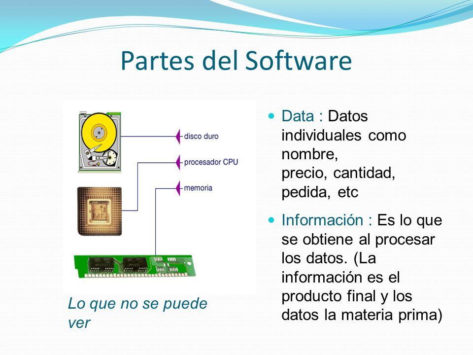 Partes del Software Lo que no se puede ver. Data : Datos individuales como nombre, precio, cantidad, pedida, etc.