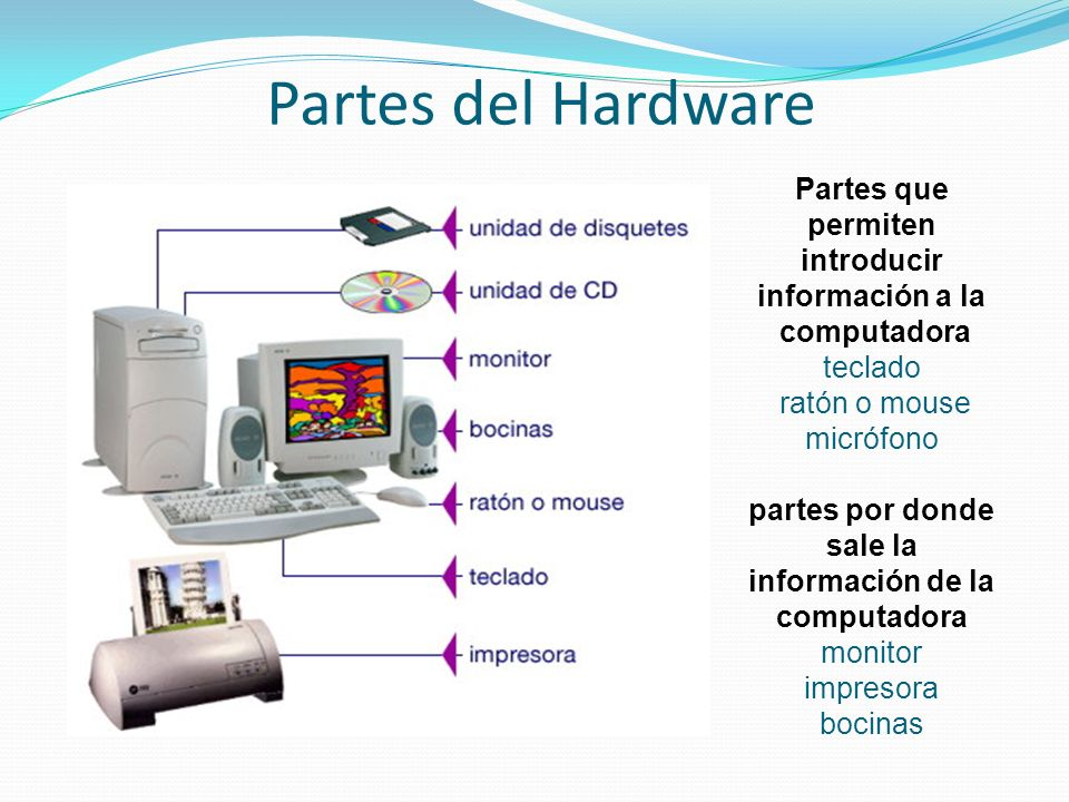 Partes del Hardware Partes que permiten introducir información a la