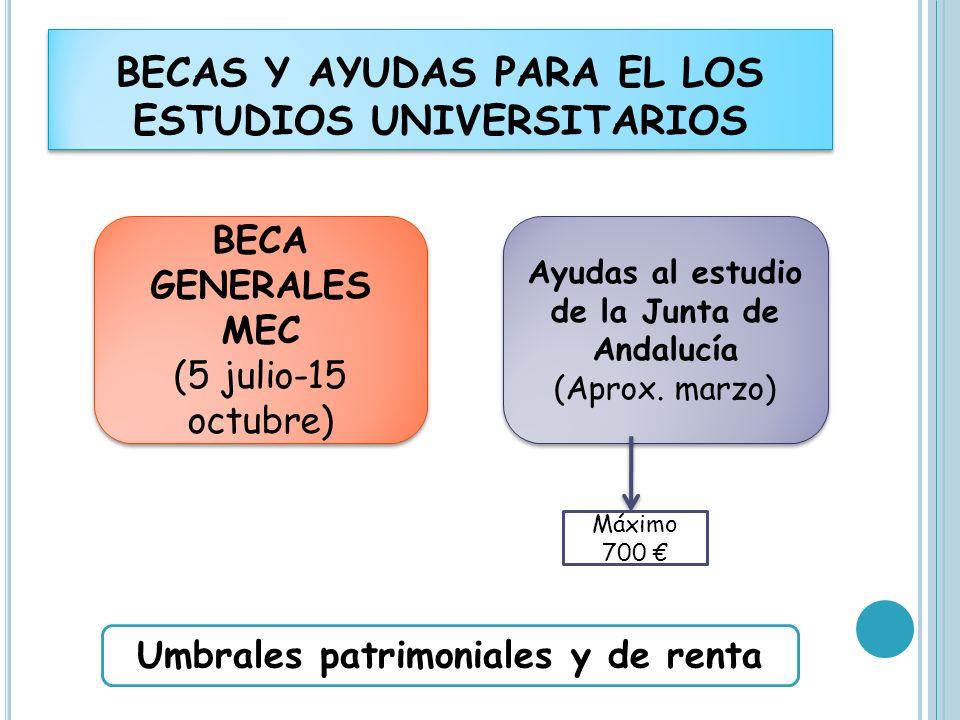BECAS Y AYUDAS PARA EL LOS ESTUDIOS UNIVERSITARIOS