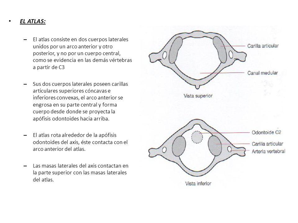 EL ATLAS: