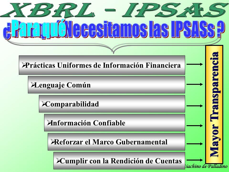 ¿ Por qué Necesitamos las IPSASs