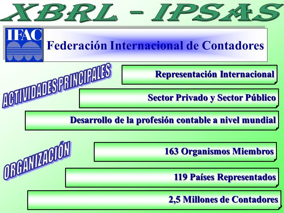 Federación Internacional de Contadores ACTIVIDADES PRINCIPALES