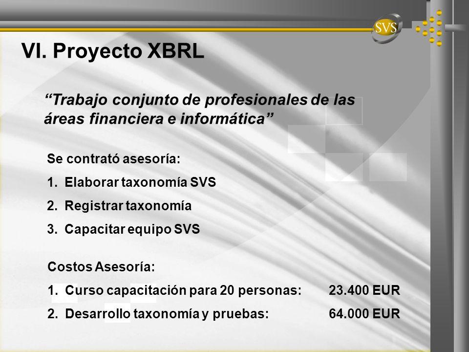 VI. Proyecto XBRL Trabajo conjunto de profesionales de las áreas financiera e informática Se contrató asesoría:
