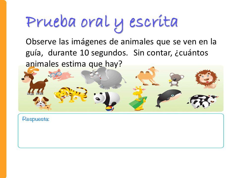 Prueba oral y escrita Observe las imágenes de animales que se ven en la guía, durante 10 segundos.