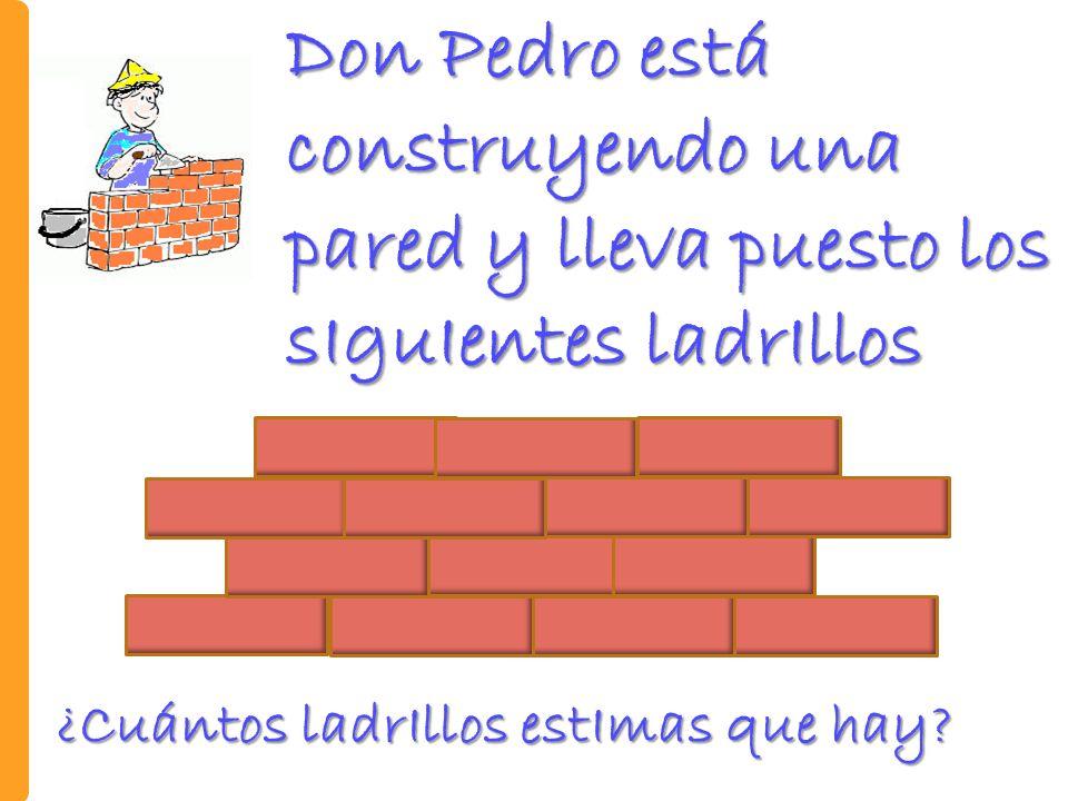 Don Pedro está construyendo una