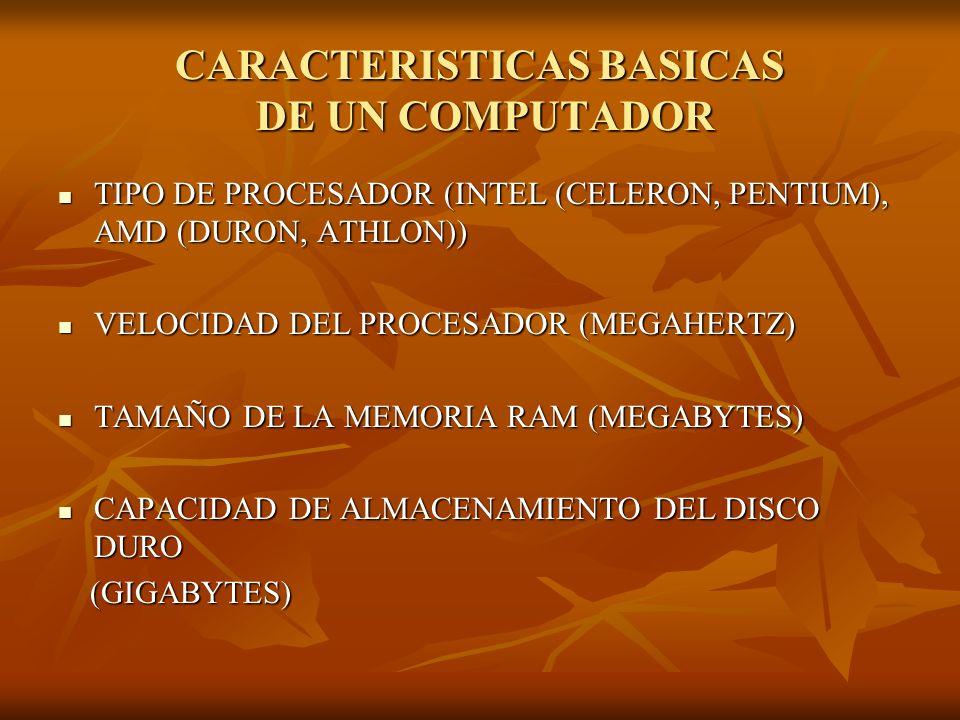 CARACTERISTICAS BASICAS DE UN COMPUTADOR