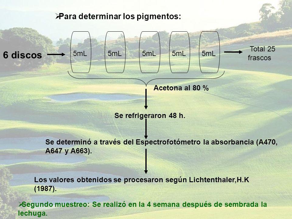 6 discos Para determinar los pigmentos: Total 25 frascos 5mL 5mL 5mL