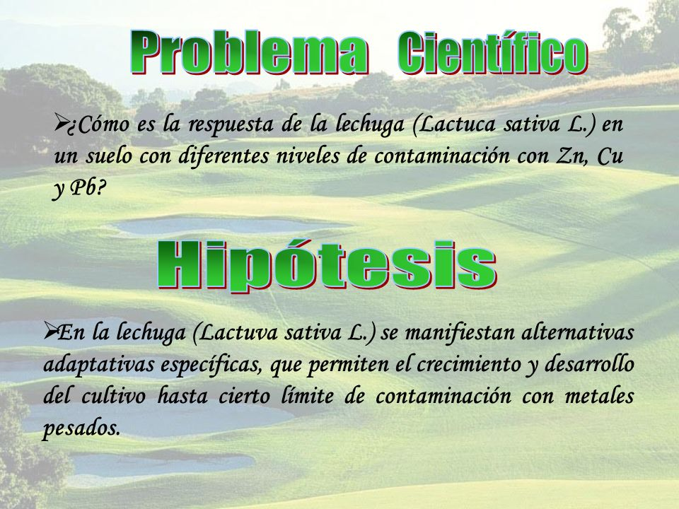 Problema Científico Hipótesis
