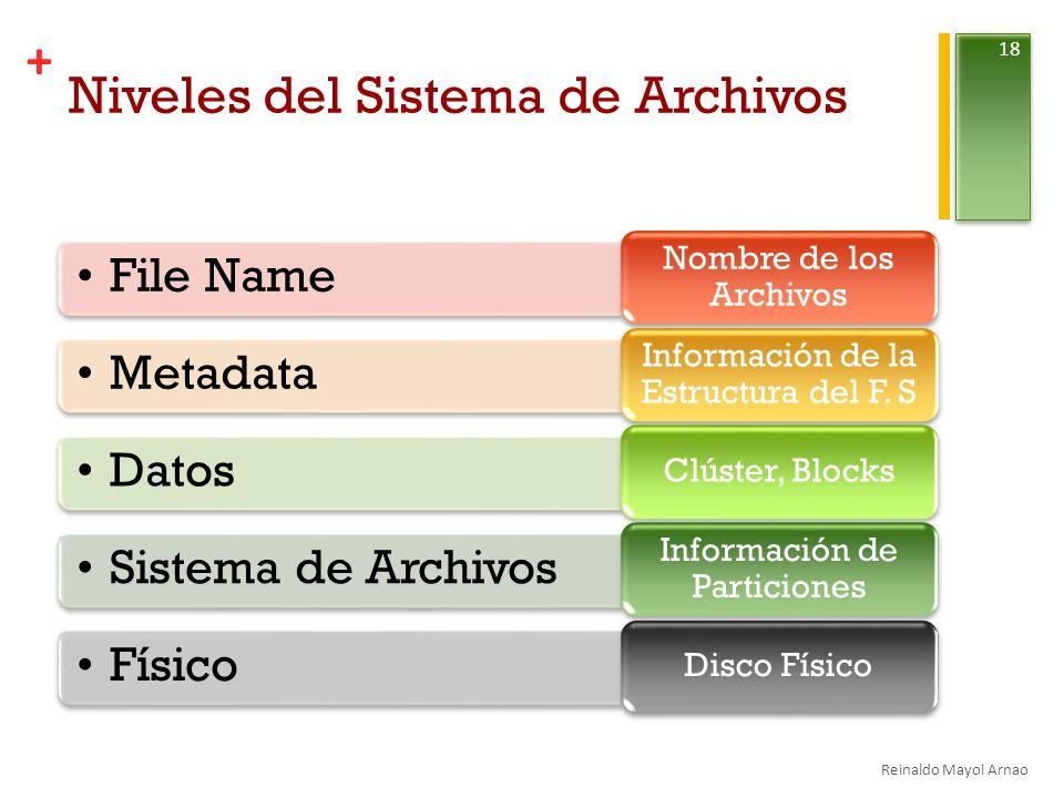 Niveles del Sistema de Archivos