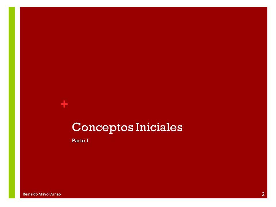 Conceptos Iniciales Parte 1 Reinaldo Mayol Arnao