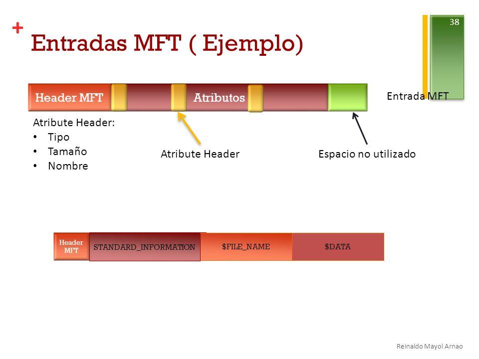 Entradas MFT ( Ejemplo)