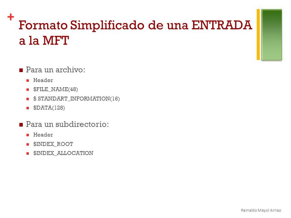 Formato Simplificado de una ENTRADA a la MFT