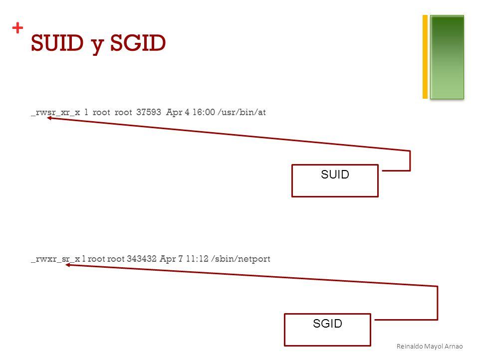 SUID y SGID _rwsr_xr_x 1 root root 37593 Apr 4 16:00 /usr/bin/at _rwxr_sr_x 1 root root 343432 Apr 7 11:12 /sbin/netport