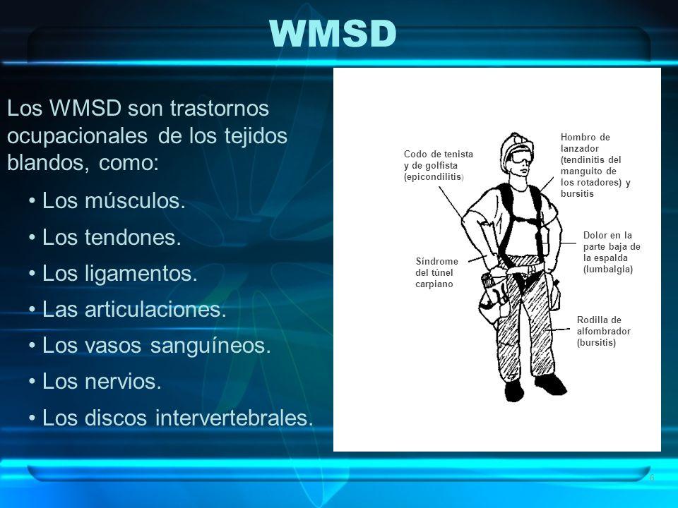 WMSD Los WMSD son trastornos ocupacionales de los tejidos blandos, como: Los músculos. Los tendones.