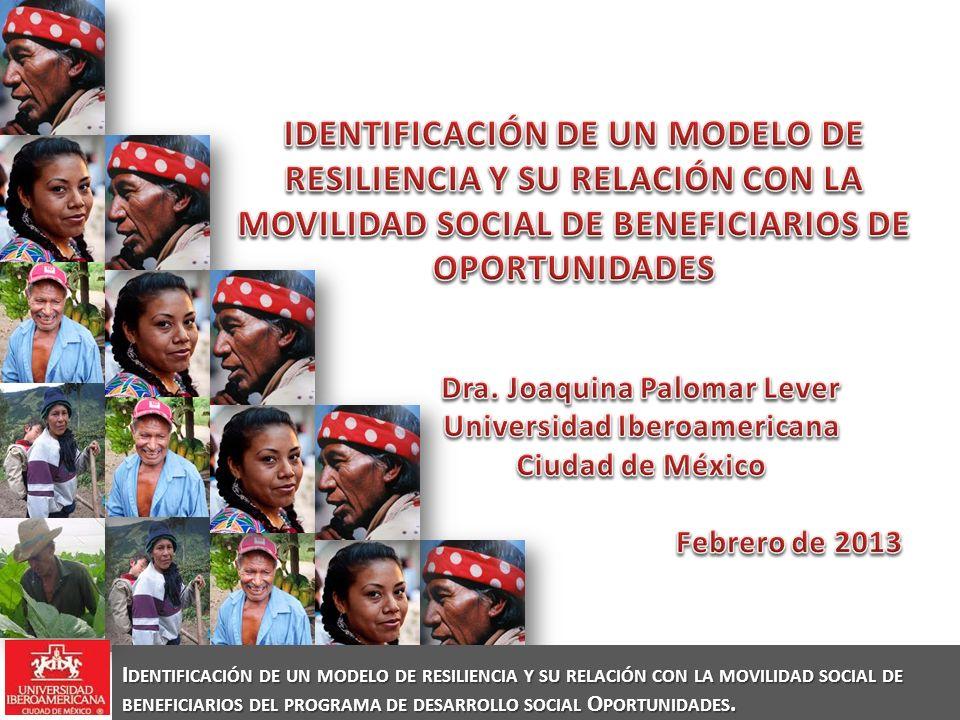 Dra. Joaquina Palomar Lever Universidad Iberoamericana