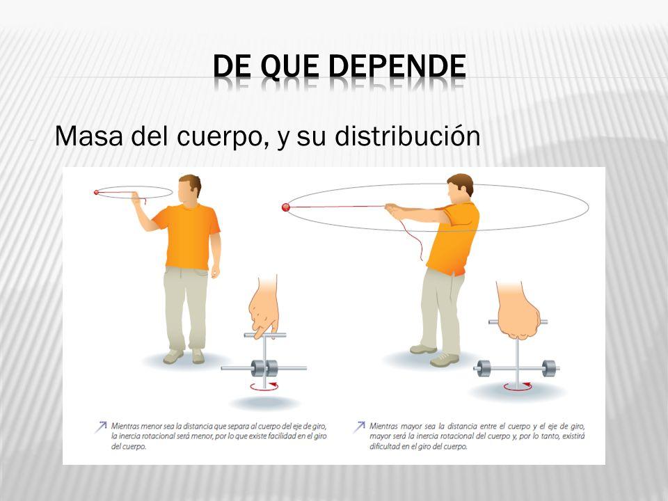 De que depende Masa del cuerpo, y su distribución