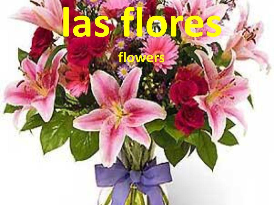 las flores flowers