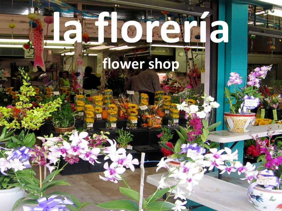 la florería flower shop