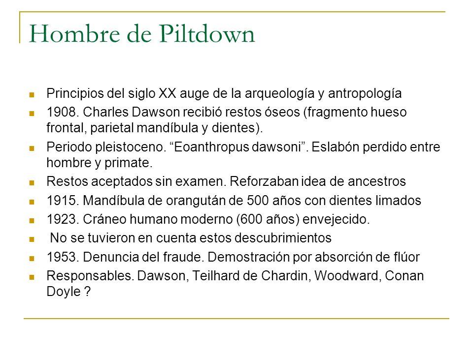 Hombre de Piltdown Principios del siglo XX auge de la arqueología y antropología.