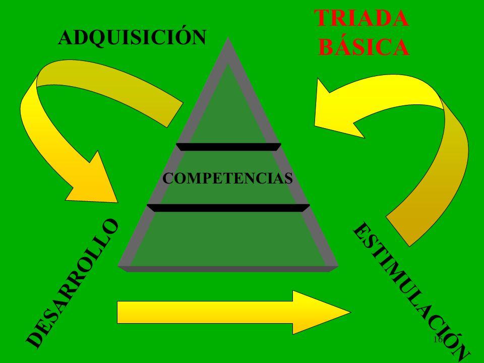 TRIADA BÁSICA ADQUISICIÓN COMPETENCIAS DESARROLLO ESTIMULACIÓN