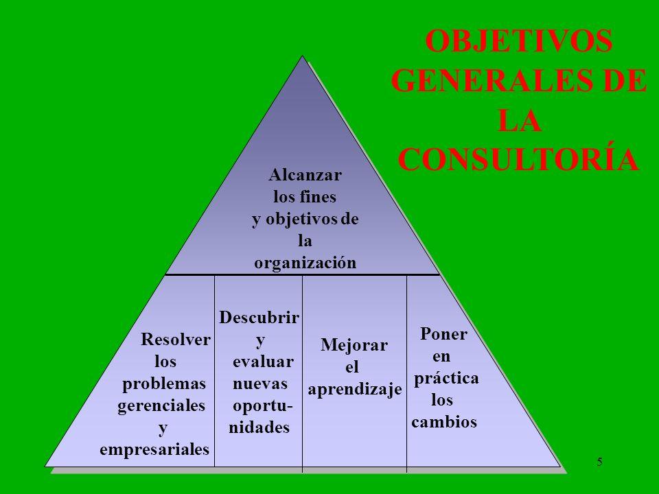 OBJETIVOS GENERALES DE LA CONSULTORÍA