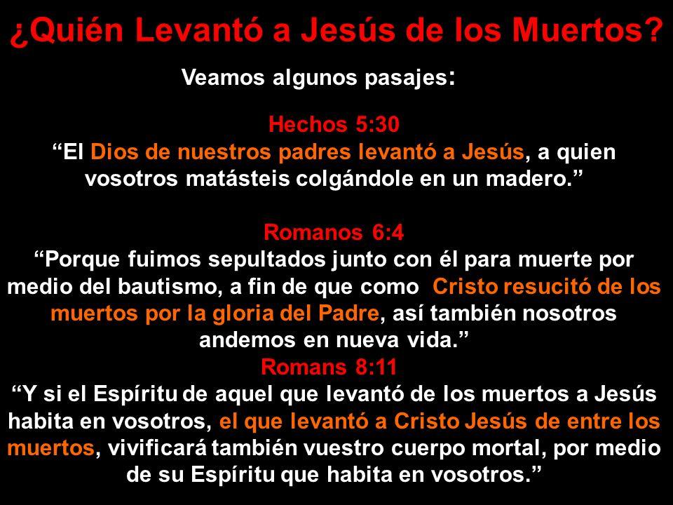 ¿Quién Levantó a Jesús de los Muertos