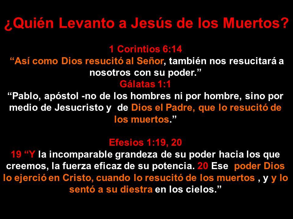 ¿Quién Levanto a Jesús de los Muertos