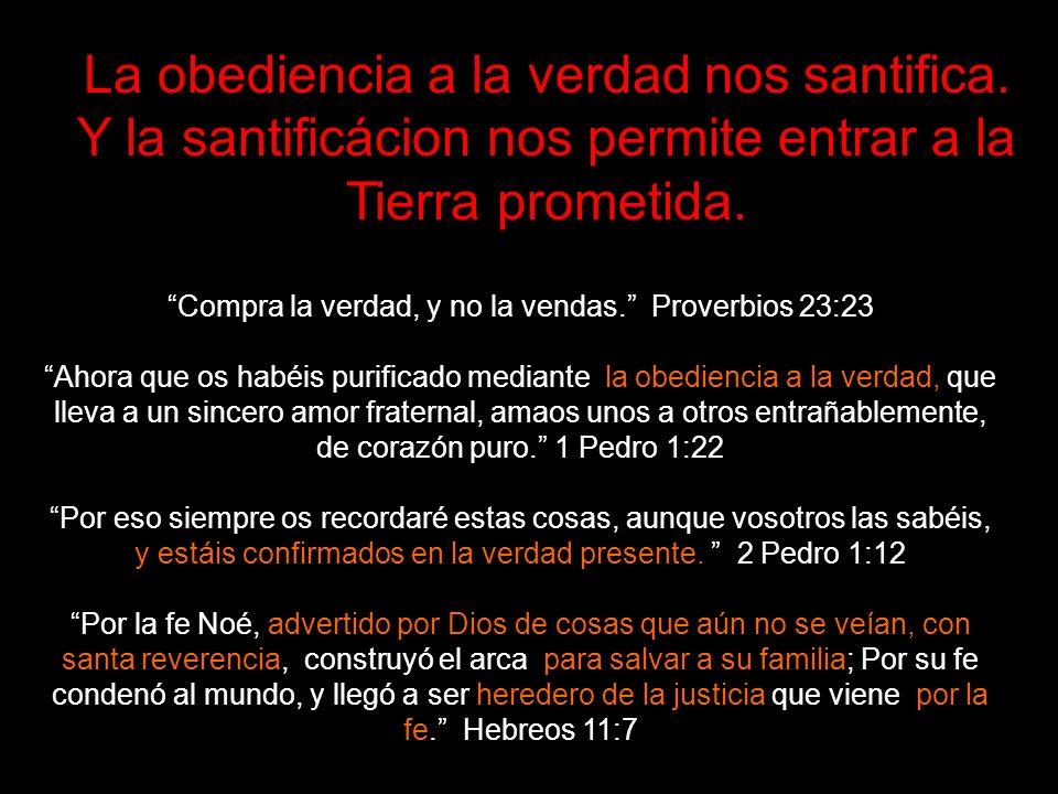 La obediencia a la verdad nos santifica.